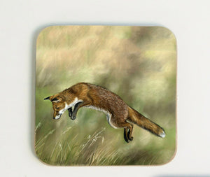 Leaping Fox Coaster