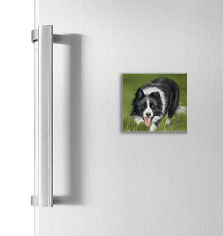 Working Collie Square Magnet