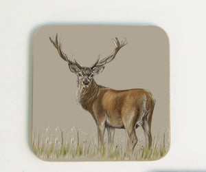 New Deer Coaster