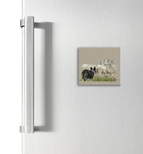 Collie Herding Sheep Square Magnet