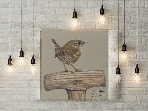 Wren On Spade Garden Bird Limited Edition Canvas Print