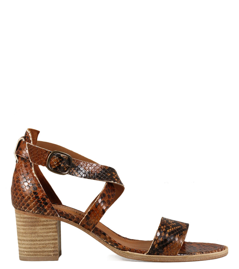 Anthology Paris Verite Python Camel