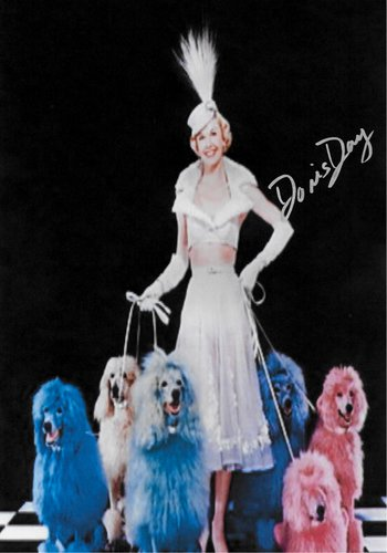 Doris Day Hand Signed Poster