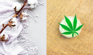 Cotton vs. Hemp: Which is Better?