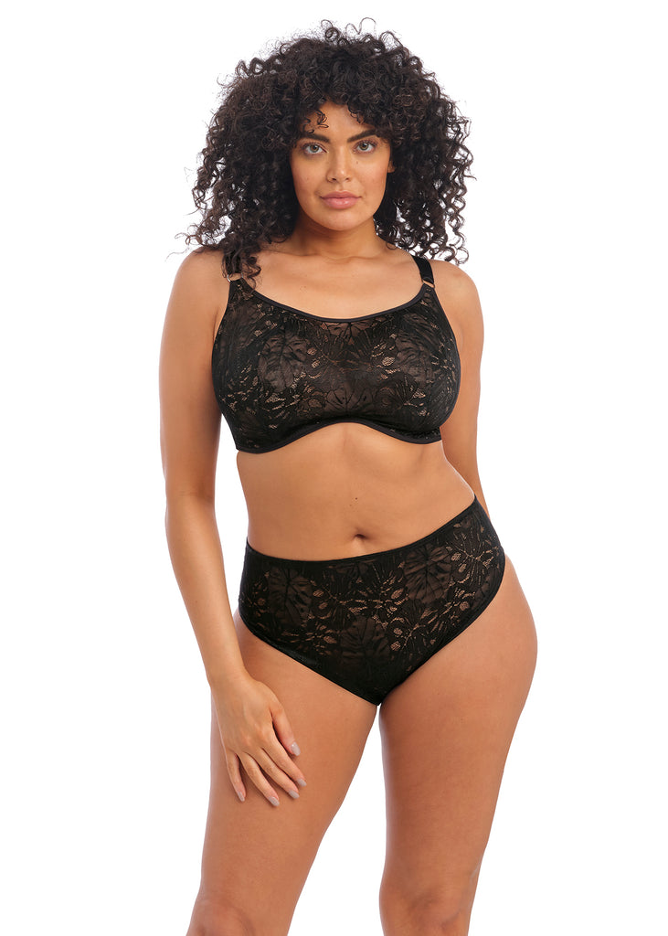 PREORDER | Kelsey Black Brief | Elomi