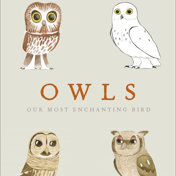 Owls by Matt Sewell