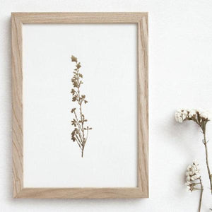 OLA Studio - Heather Print