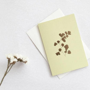 OLA Studio - Fern Card