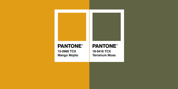 Color Combo of the Month | Mango Mojito + Terrarium Moss