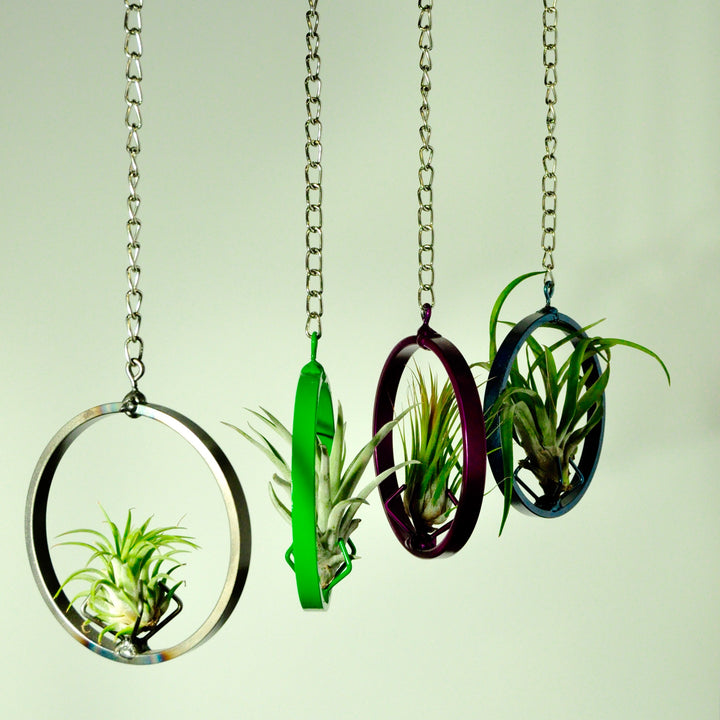 hanging air plant holder metal display chain