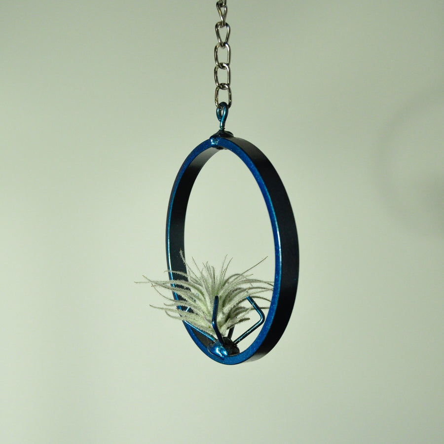 air plant holder metal stand blue tillandsia small hanging chain