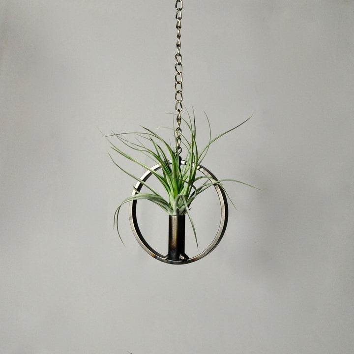 Hanging Air Plant Holder: Circle with Cylinder