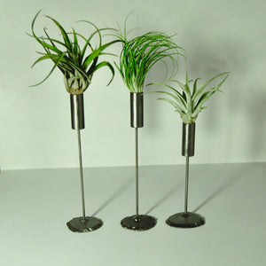 air plant stand metal holder for indoor plants tillandsia display three plants with stands