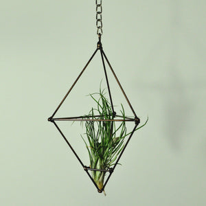 hanging plants air plant display metal prism indoor vertical garden gold