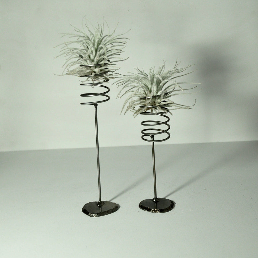 Large Spring Stand Air Plant Holder