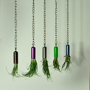 hanging air plant holder metal indoor plant display colorful