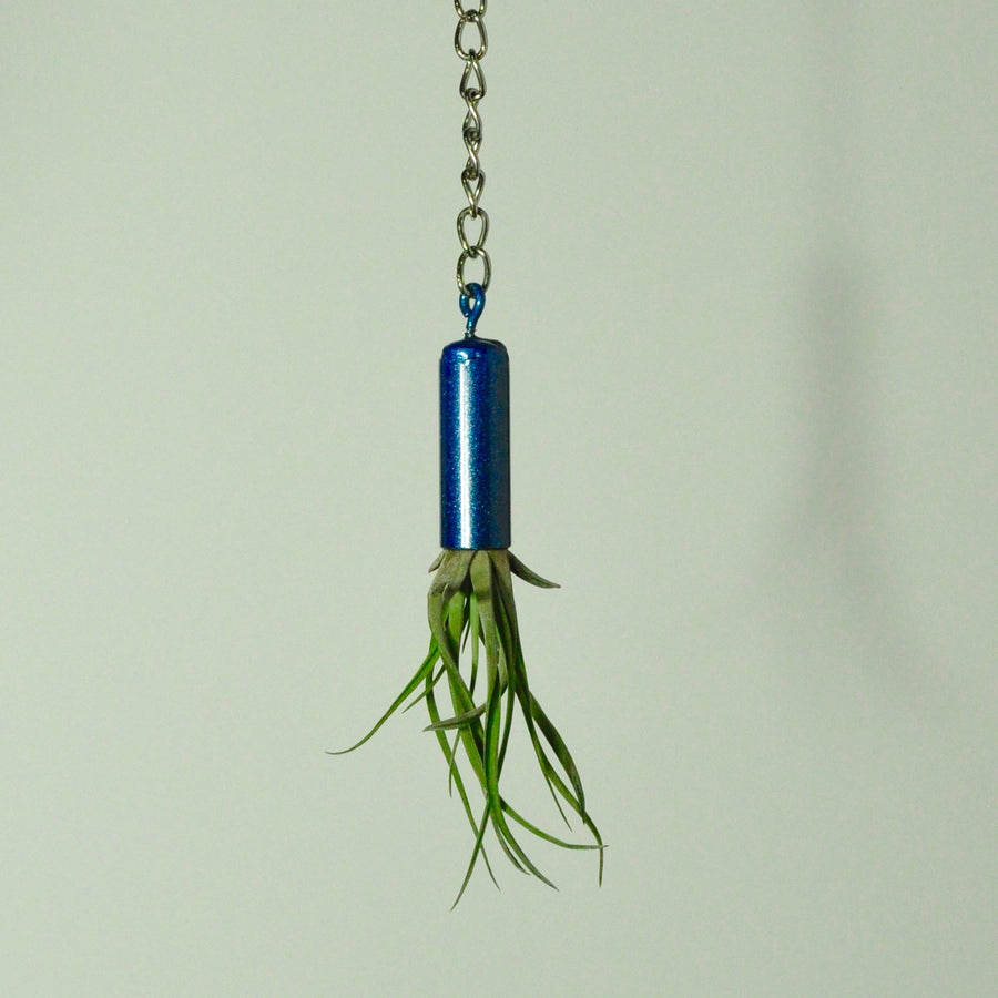 hanging-plant-holder-metal-display-blue-for-tillandsia