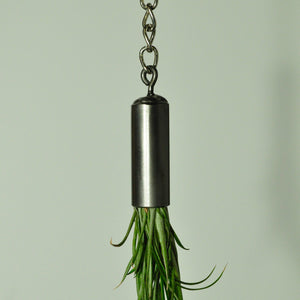 hanging-air-plant-holder-hanging-plants-metal
