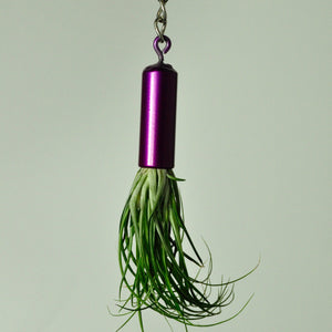 hanging-indoor-metal-plant-holder-purple