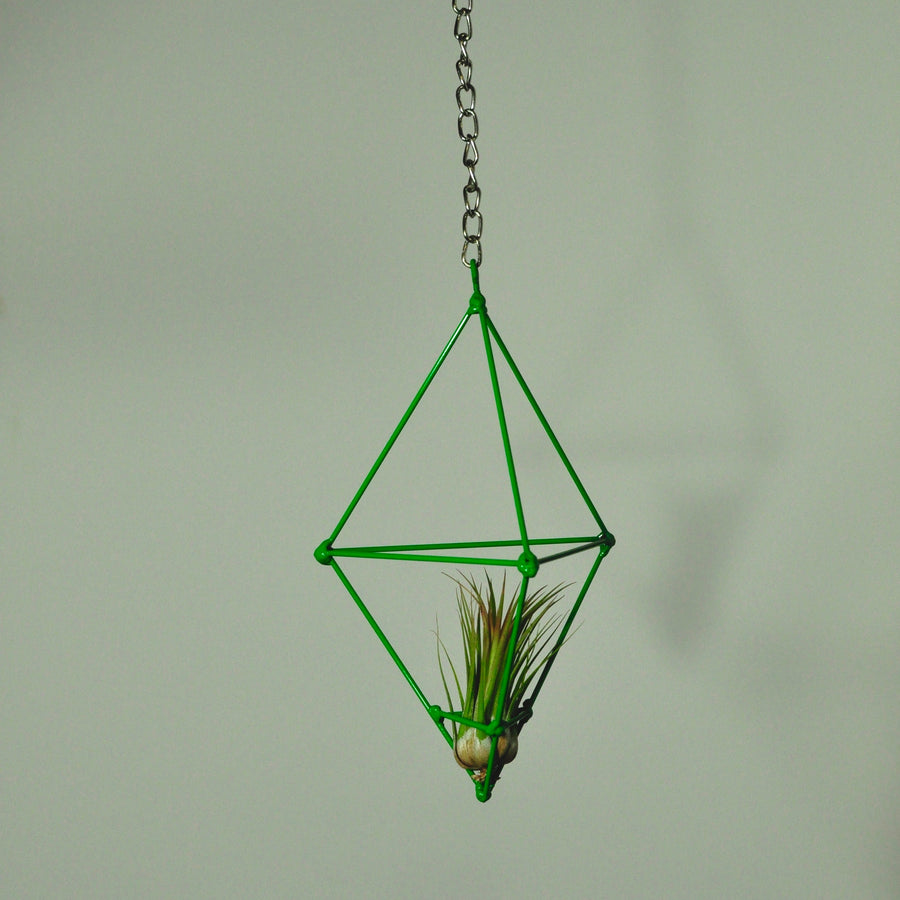 hanging air plant display metal prism indoor vertical garden green