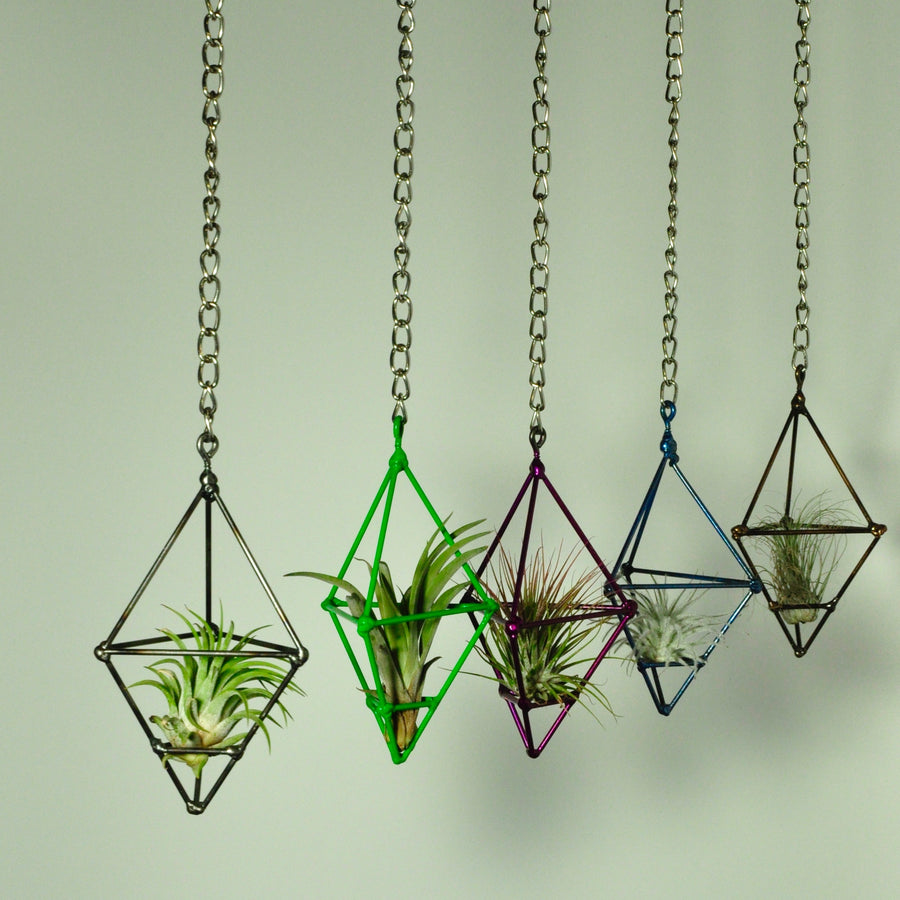 hanging plants air plant holder small prism chain