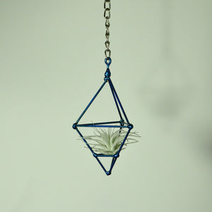 hanging air plant holder blue prism on chain metal