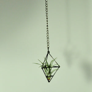 hanging plants air plant holder small prism chain steel indoor plants
