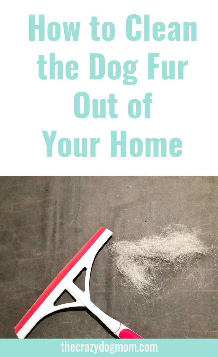 How to Clean the Dog Fur Out of Your Home