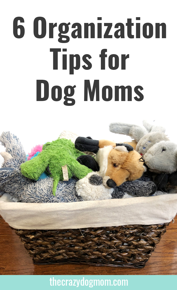 6 Home Organization Tips for Dog Moms