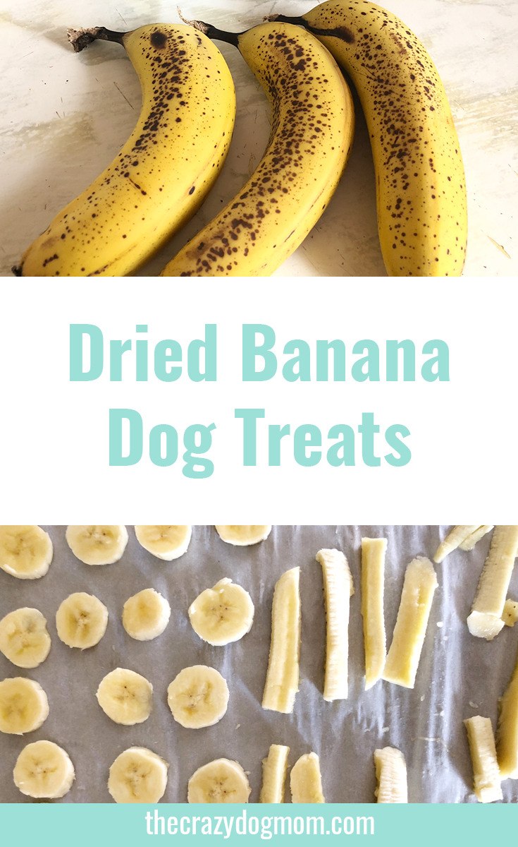 Banana Dog Treat Recipe