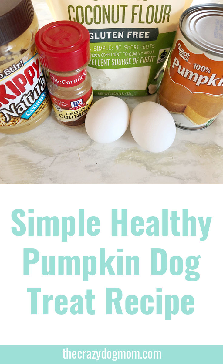 Simple Pumpkin Dog Treats