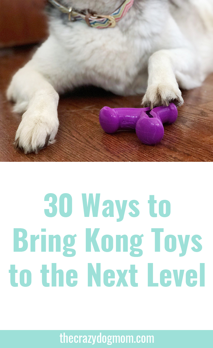 30 Ways to Bring Kong Toys to the Next Level