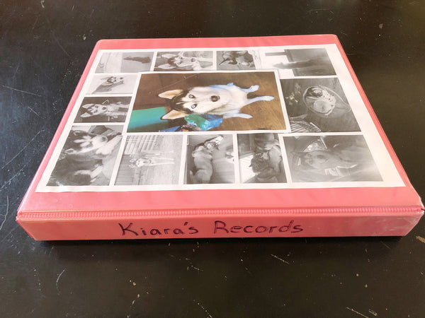 vet records binder