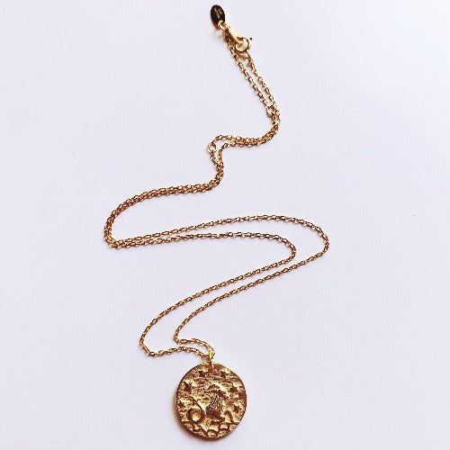 Capricornus Coin Necklace Cristalore