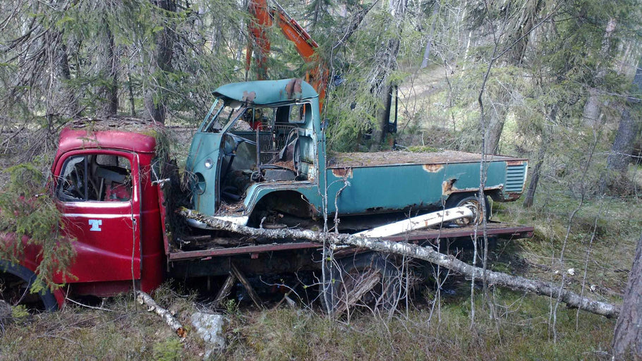 -64 VW Single Cab forest wreck