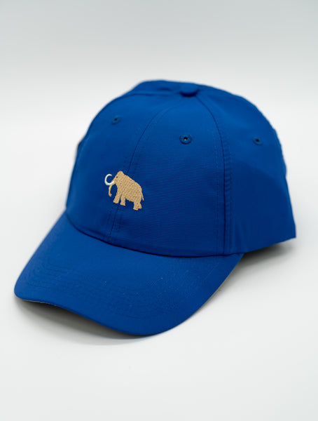 Imperial - Adjustable Cobalt Hat