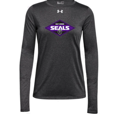 Under Armour Women's Gray Long Sleeve Locker Tee