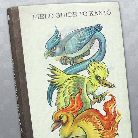 Field Guide to Kanto