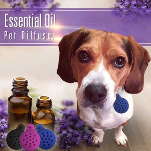 Essential Oil Pet Diffuser