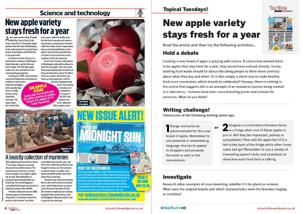 Topical Tuesdays from The Week Junior – New apple variety stays fresh for a year