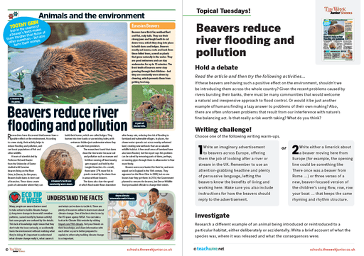 Topical Tuesdays from The Week Junior – Beavers reduce river flooding