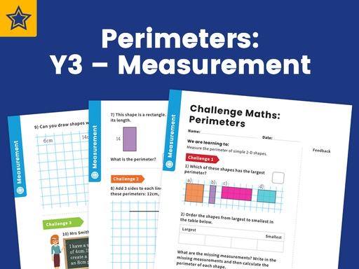 Perimeters: Y3 – Measurement – Maths Challenge