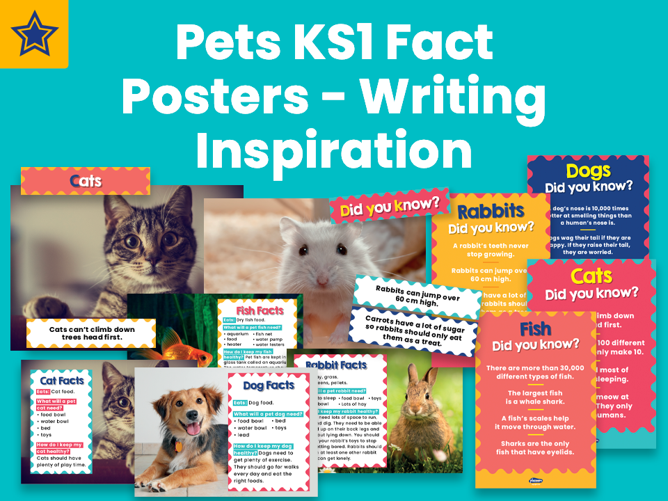 Pets KS1 Fact Posters - Writing Inspiration