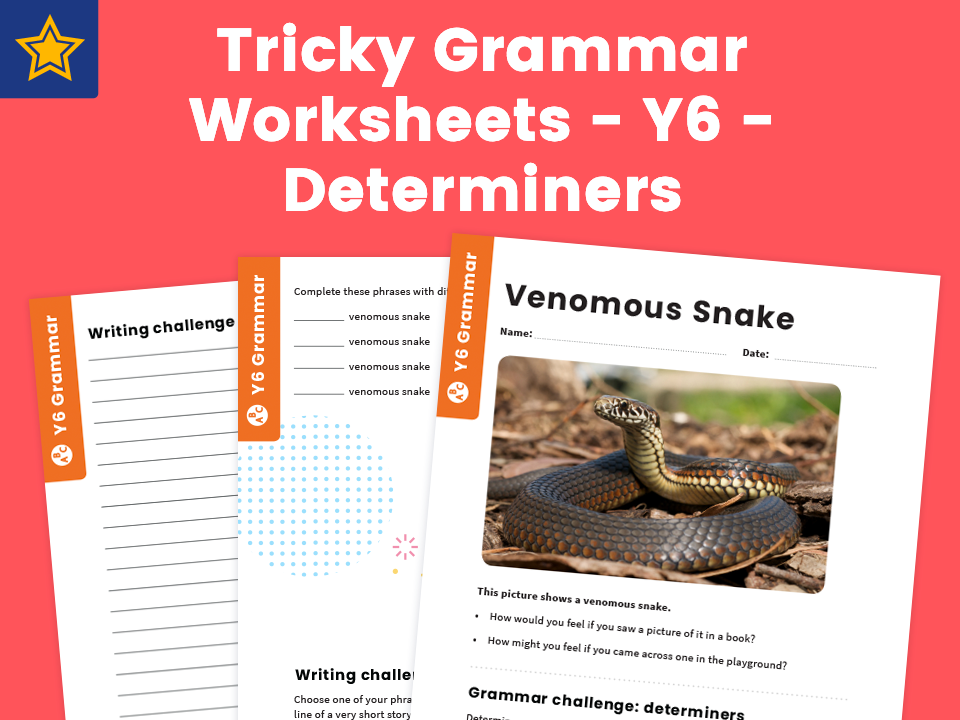 7 of the Best Determiners Resources and Worksheets for KS2