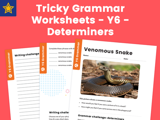 Tricky Grammar Worksheets – Y6 – Determiners