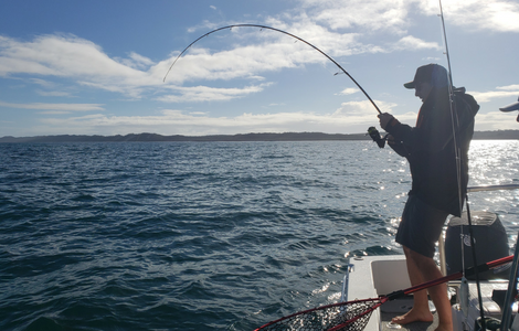 Tackle HQ | Pure Fishing Australia | Hervey Bay Sport Fishing