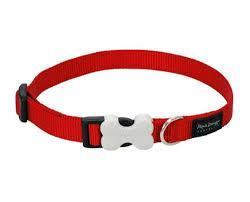 Pet Collars Red Dingo Classic Collar RedDingo