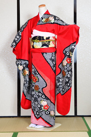 Long-sleeved kimono 6 items set / Furisode / FK#1079