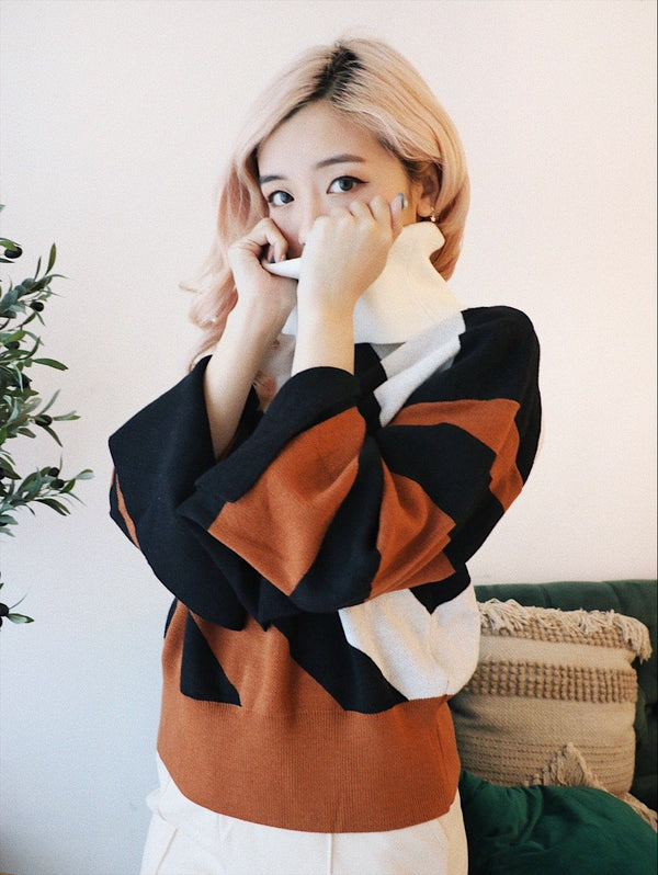 Black & Brown&White Striped Turtleneck Sweater