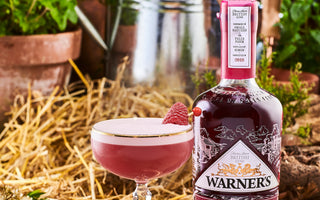 Harrington Clover Raspberry Gin Cocktail